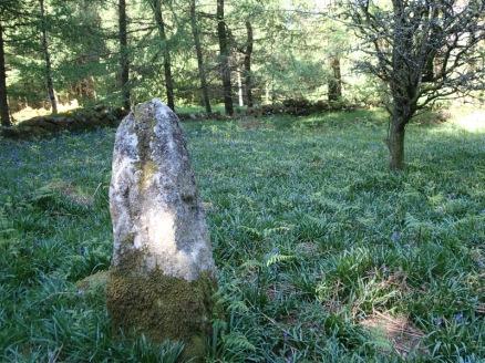 Standing Stone, Crannagh